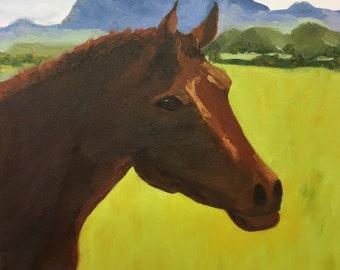 Horse in Santa Ynez