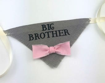 Gray Big Brother Dog Bandana with Pink Bowtie for Pregnancy Announcement Newborn Photos Baby Shower