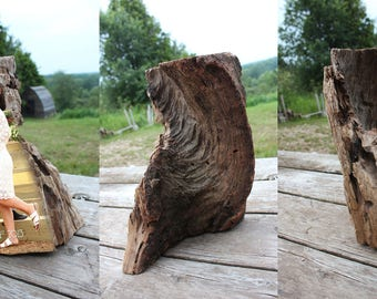Wood Photo Art - Unique Customized Sculpture - Large
