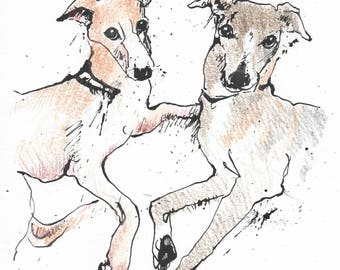 Whippet Buddies - Original pen & ink drawing with coloured pencil - A5 gift, dog mates, whippets friends, dogs, grey, golden besties, mates