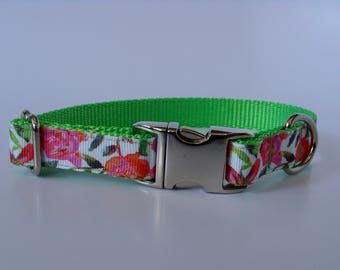 Lime Rose Small Dog Collar - Metal Buckle - READY TO SHIP!