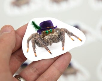 Jumping Spider with hats, funny gift, cute laptop sticker, spider gift, spider gag, jump spider, phidippus,  sticker pack, arachnid,