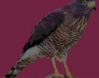 A Roadside Hawk Cross Stitch Chart