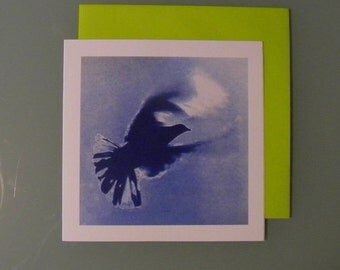 Flown - double card - offset / Pigeon - Dove