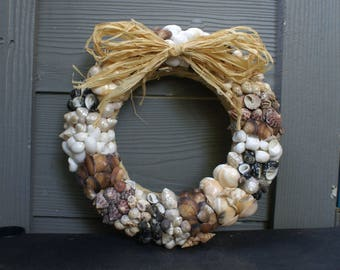 "Seashell wreath - 11"" mixed color sea shell wreath - beach wreath - summer wreath - coastal decor"