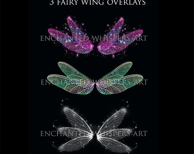 fantasy fairy dragonfly wing overlays for Photoshop