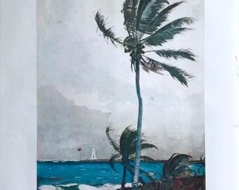 Homer Print - Palm Tree Nassau 1898 - Vintage Book Illustration Ready to Frame