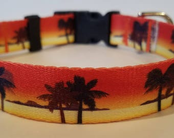 Sunset Dog Collars