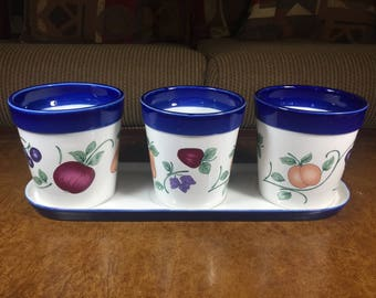 Princess House Orchard Medley Flower Pot Set with Three Pots on Tray