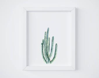 San Pedro Cactus - cactus painting - cactus watercolor - cacti painting - southwestern painting - greenery - cacti art - southwest