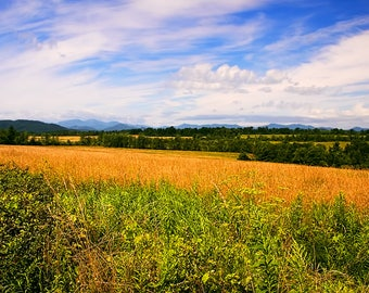 Country Landscape, Country Print, Field Photograph, Champlain Valley, Adirondack Mountains, Fine Art Photography, Gift Idea, Country Living