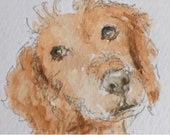 Reserved for SANDY.........Dog ORIGINAL Miniature Watercolour,Spaniel, Free Shipping