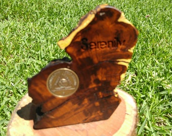 Desert Ironwood Medallion Display