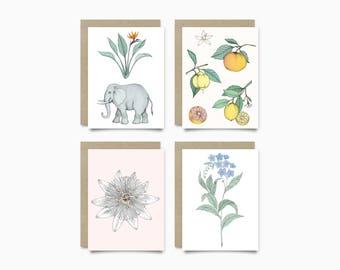 Greeting Cards - Botanical Pack
