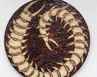 Centipede 6cm Round Pyrography Pendant