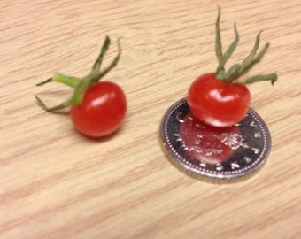 World's Smallest Tomato! (25=>1/4 oz seeds) Tiny Novelty from Zellajake!  #312
