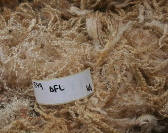 Blue Faced Leicester raw wool 0.8kg/1.76lb