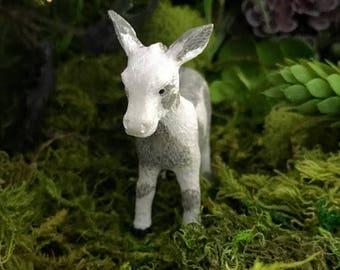 Miniature Gray and White Donkey