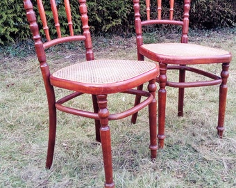 Duo fischel stained mahogany chairs