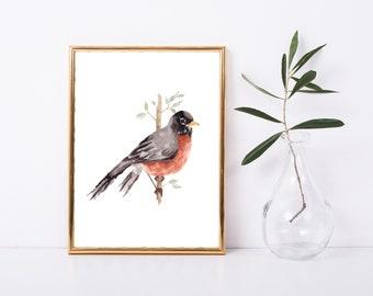 8.5x11 Robin Watercolor Print