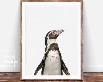 Penguin Print, Penguin Wall Art, Nursery Wall Art Decor, Penguin Printable, Nusery Animal, Animal Print Decor, Digital Shops, Nursery Print