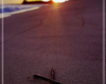 X Marks the Spot: Postcards from Hawaii