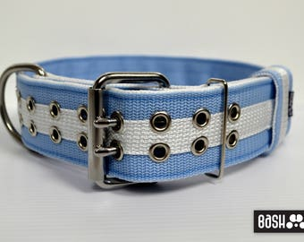 Strong Dogo Argentino Dog Collar / Argentina edition