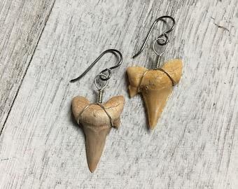 Shark tooth earrings noibium gunmetal hypoallergenic wirewrapped handmade bone