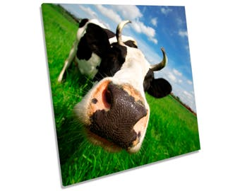 Funky Cow Face CANVAS WALL ART Square Print