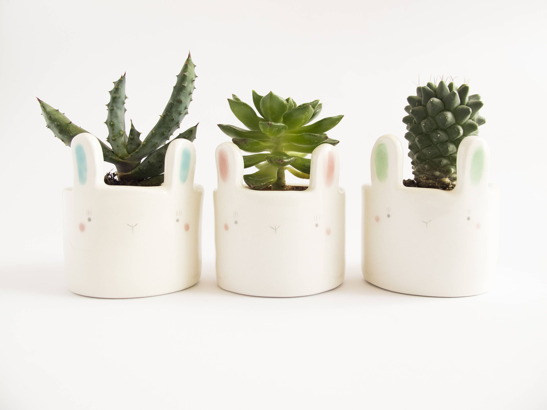 Face Plant Pot Part - 48: ?zoom