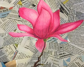 Pink Flower on Newspaper *Print*