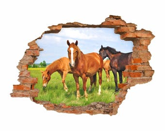 056 wall decals-horses - hole in the wall