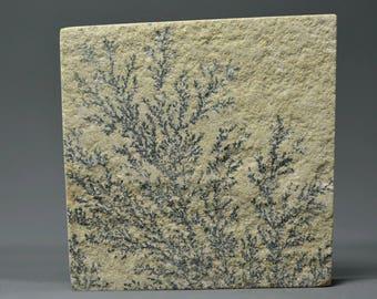 Psilomelane Druzy.. Psilomelane cabochon.. Dendritic limestone..48.1x49.3x5.75 mm...145.4 Cts...#2620