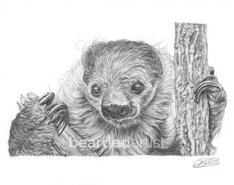 "8.5x11"" OR 11x17"" Print of Moe the Sloth from the Cincinnati Zoo"