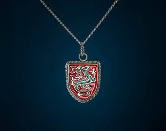 Silver pendant with dragon on shield