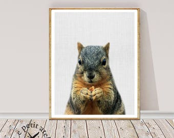 Squirrel Print, Woodlands Animal Wall Art, Nursery Decor, Colour animal, Modern Minimal, Instant Printable Digital Download, Kids Room Art