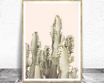 Desert Print, Cactus Photography, Desert Rose, Bohemian Decor, Neutral Colors, Boho Printable, Large Poster, Desert Photography, Pastel Pink