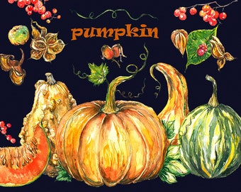 Pumpkin clipart, pumpkins clipart, watercolor pumpkin, autumn clipart, halloween clipart, Hand Painted, clip art, digital watercolor