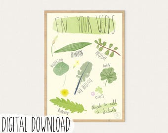 Edible Weeds, Infographic, Poster, Art Print, Large printable poster, Digital download, Wild Edibles