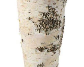 "Rustic Birch Bark Vase 9"", Rustic Wedding, Wedding Decorations, Decorations, Rustic Decorations, Party Decorations, Vases, Wood, Wedding"