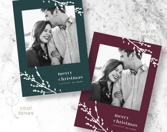 Winter Branch Holiday Photo Cards