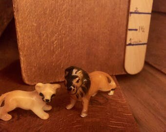 Miniture lion and lioness