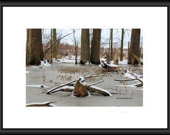 Wintery Walk, Photography, Free Shipping, Print, Framed Print, Canvas Wrap, Canvas with Floating Frame, Wall Art, Home Decor, Nature Pic