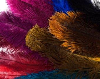 Dyed Ostrich Floss Feather Mix - B810M