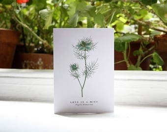 Love in a Mist: Greeting Card