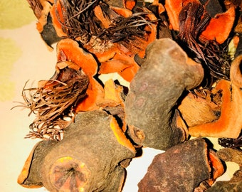 Dried Flowers - Orange Dried Floral Pods 4 oz Bag