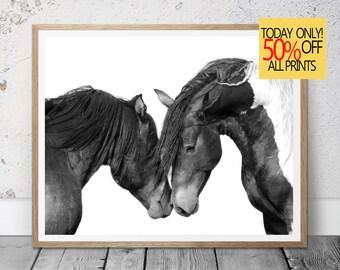 Horse Photography,  Horse Print,  Horse Art, Black White Horses, Horses Print, Modern Minimalist, Printable Large, Printable Download