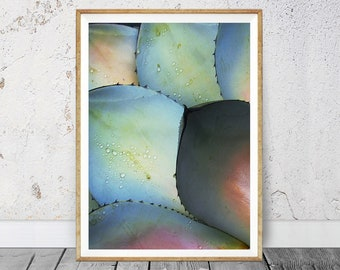 Agave Photography, Agave Leaves Print, Succulent Print, Best Selling, Coastal Wall Art, Instant Download Printable Art, Modern Wall Decor