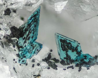 Framed Mineral Micro-Photo - Blue Posnjakite from Clara Mine