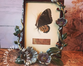 Luxury Pressed Fairy in an ornate Frame - Preserved Dead Fae - Macabre Oddities - Curio Oddity - Vintage - Flowers and diamonte - Butterfly